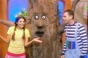 מה עושים העצים